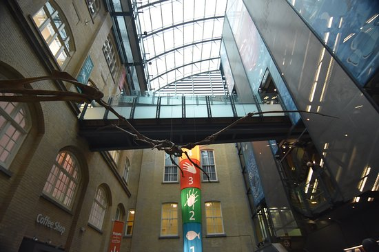 World Museum: The atrium
