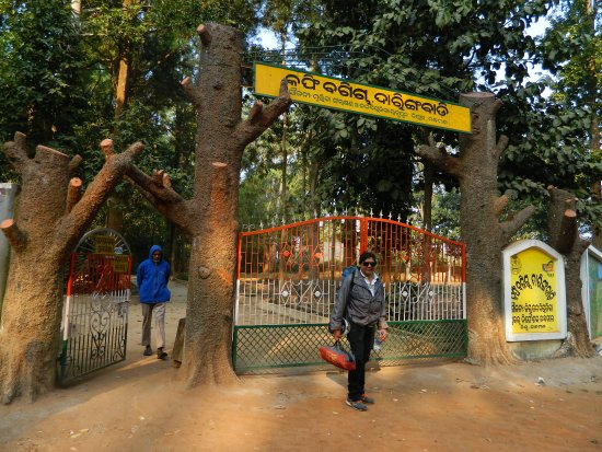 Daringbarhi, Indie: Entrance Gate for Central Nursery