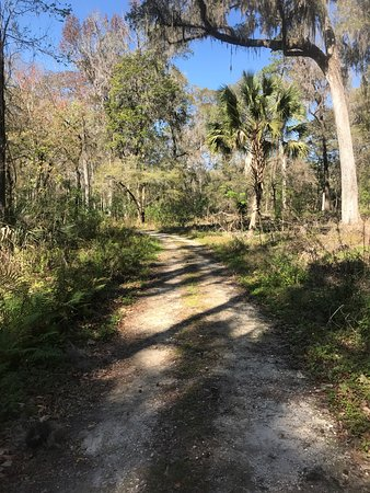 Silver Springs, FL: photo6.jpg