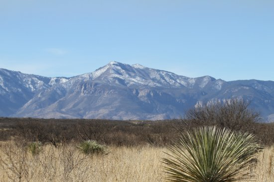 San Pedro Riparian National Conservation Area: Huachuca Mountains