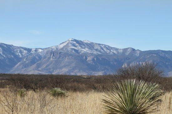 Hereford, AZ: Huachuca Mountains