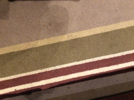 Penrith, UK: Stained rug