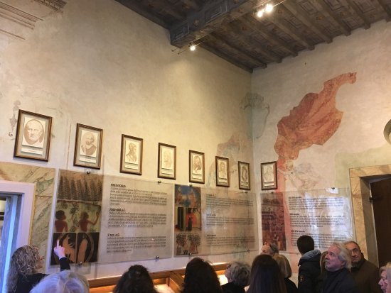 Aboca Museum: photo2.jpg