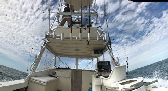 Port Canaveral Sport Fishing Charter : photo3.jpg