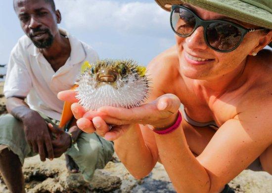 Turtle Bay Beach Club: Tour on the beach
