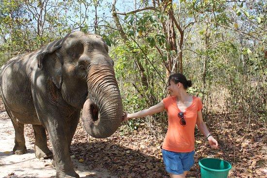 Tha Yang, Thailand: best friends at first sight
