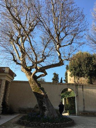 Villa d'Este: photo4.jpg