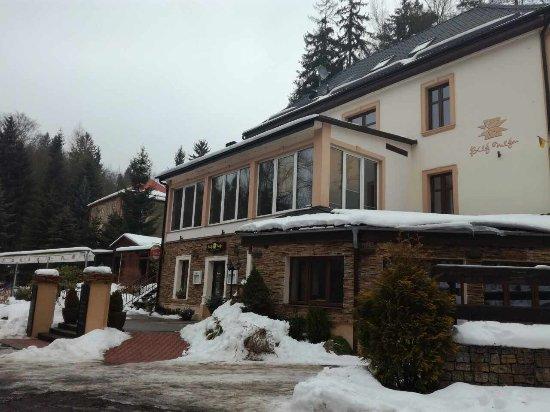 Villa Bily Mlyn : Exterior in winter