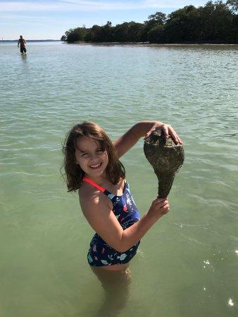 Bradenton Beach, FL: photo4.jpg