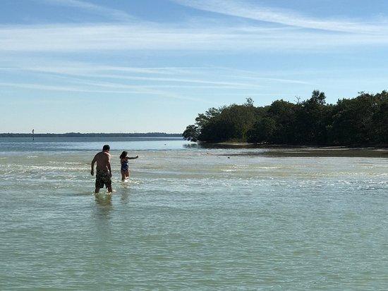 Bradenton Beach, Φλόριντα: photo5.jpg