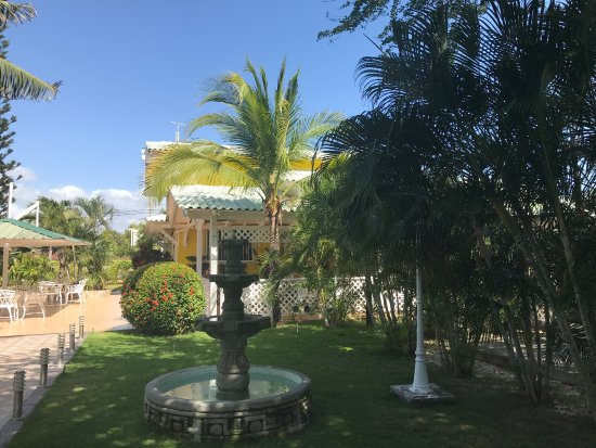 Hostal Casa Amarilla: Séjour en famille ... février 2017 !