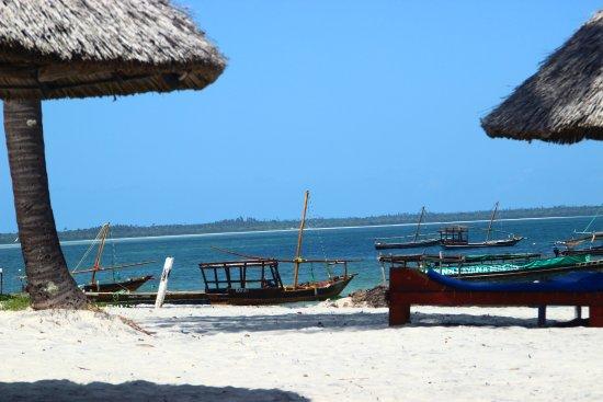 Mafia Beach Bungalows : Strand Utende