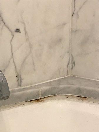 The Ritz-Carlton, Laguna Niguel: Mildew in marble bathroom.