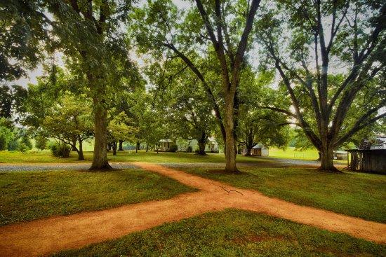 Hillsborough, NC: Looking towards the Farm House from the trail head.
