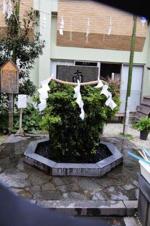 Нерима, Япония: photo5.jpg