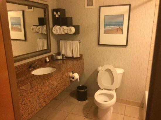Embassy Suites By Hilton Anaheim South: Bathroom