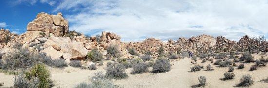 Twentynine Palms, CA: Hidden Valley Loop Trail panorama