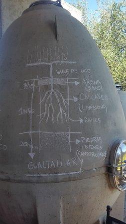 Маипу, Аргентина: tanque de fermentacion