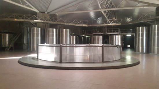 Tunuyan, Argentina: interior de bodega, tanque de fermentacion