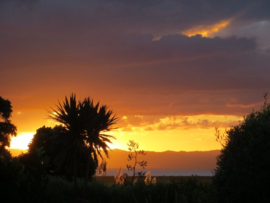 Thames, New Zealand: Sunset