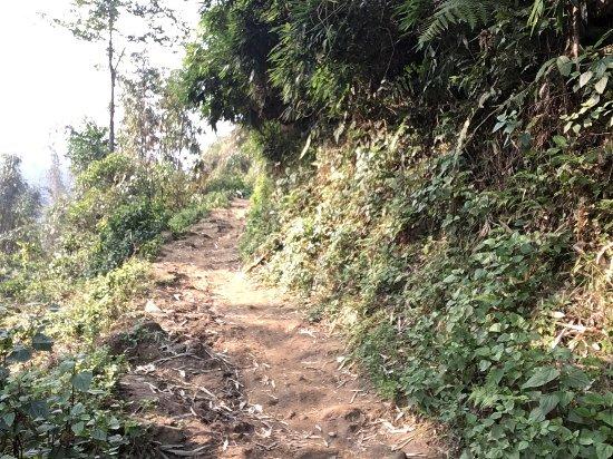 Topas Ecolodge: photo5.jpg