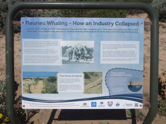 Goolwa, Australien: Whaling signboard