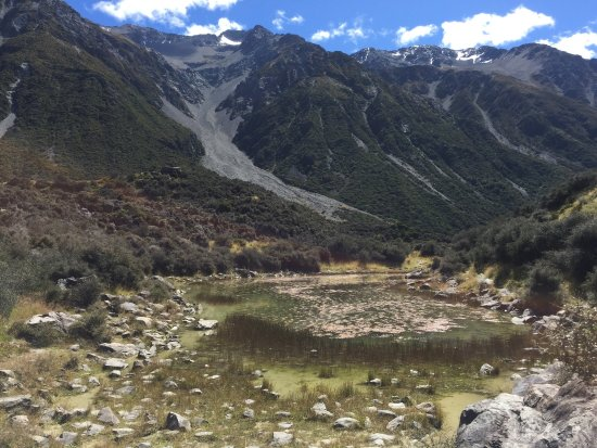 Aoraki Mount Cook National Park (Te Wahipounamu), Nueva Zelanda: Don't go looking for blue lakes here at Mount Cook.  The smaller of the lakes are green, and the