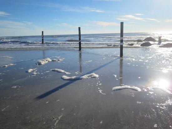 Redington Shores, FL: Low tide on the beach