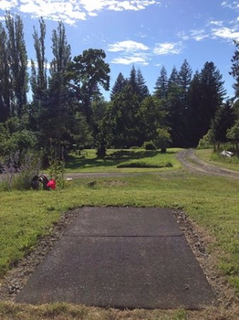 Skamokawa, WA: Hole 1 on Woodpecker Disc Golf Course