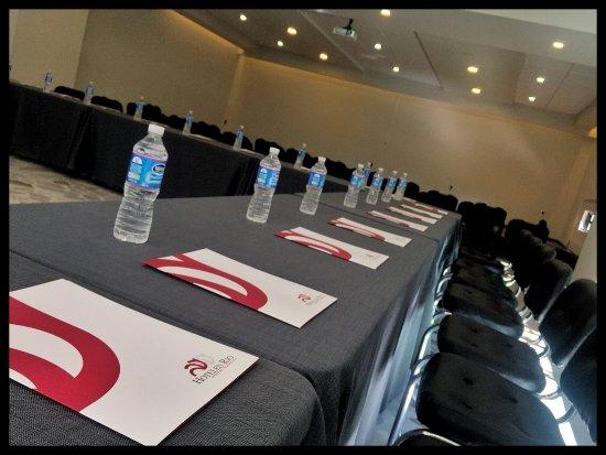 Hotel Rio Tequisquiapan: Salones de convenciones