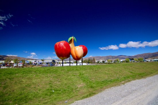 Cromwell, New Zealand: photo1.jpg
