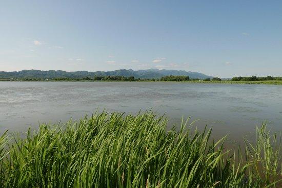 Bibai, Japan: 宮島沼2