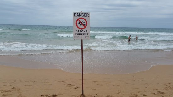 Manly Ferry: Stinger warning sign @ Manly Beach