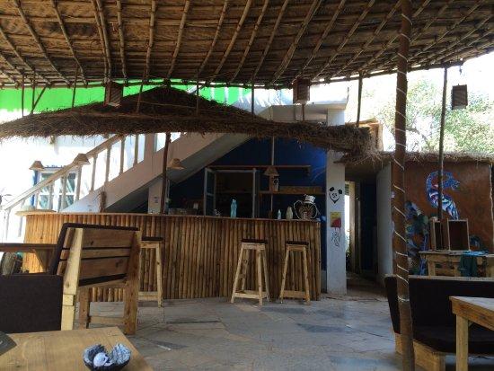 Anjuna, India: Caterpillar Hostel