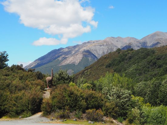 Arthur's Pass National Park, Selandia Baru: vue depuis le restaurant