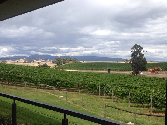 Yarra Glen, Australia: photo0.jpg