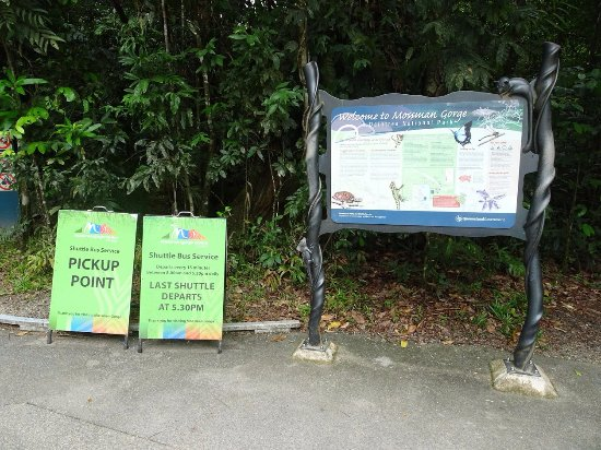 Daintree Region, Australia: Gorge parking lot