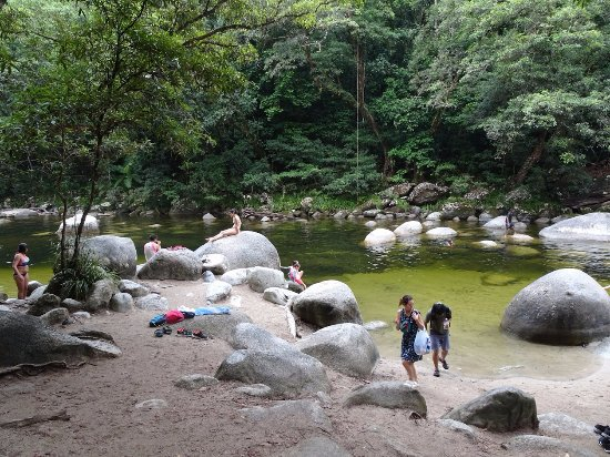 Daintree Region, Australia: Swimming hole