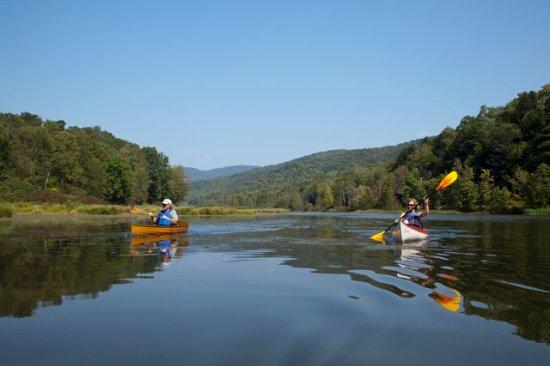 Susan's Pleasant Pheasant Farm Kayaks