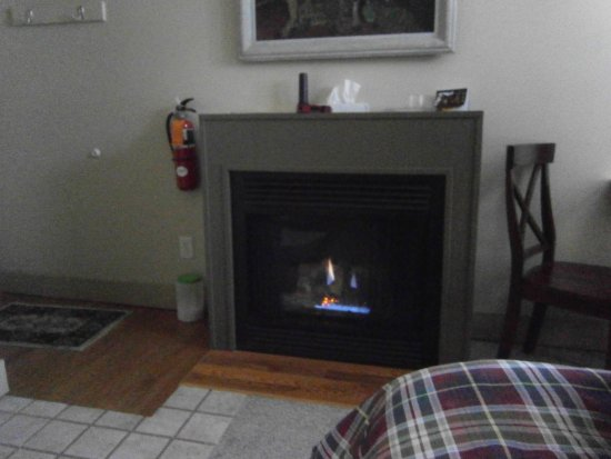 Spicer, MN: Gas fireplace in room