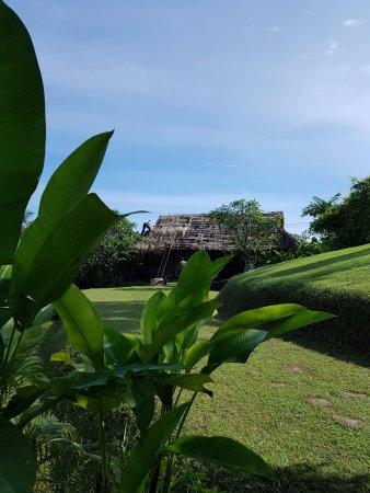The Damai: Gardens
