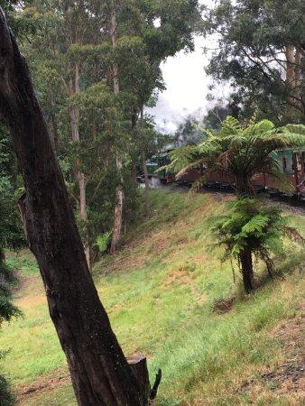 Belgrave, أستراليا: photo1.jpg