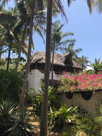 Shambani Cottages : Cottage im Garten