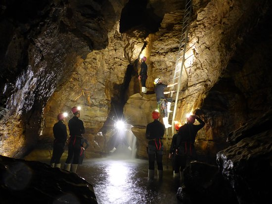 Eco Friendly Waitomo Caves Tour