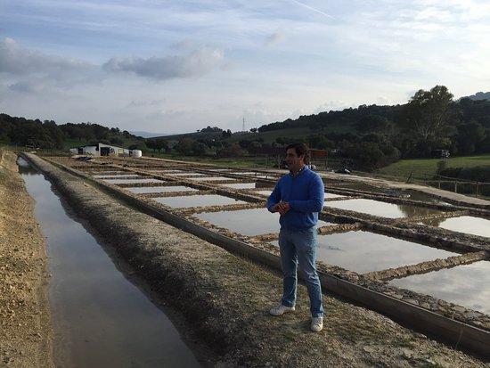 Prado del Rey, España: El propietario, delante de las balsas de extracción de sal