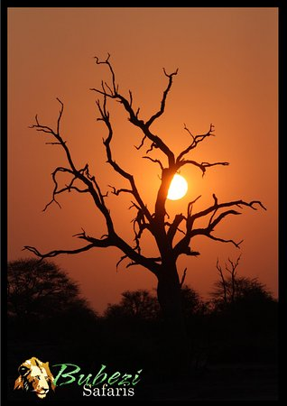Hazyview, South Africa: Sun set