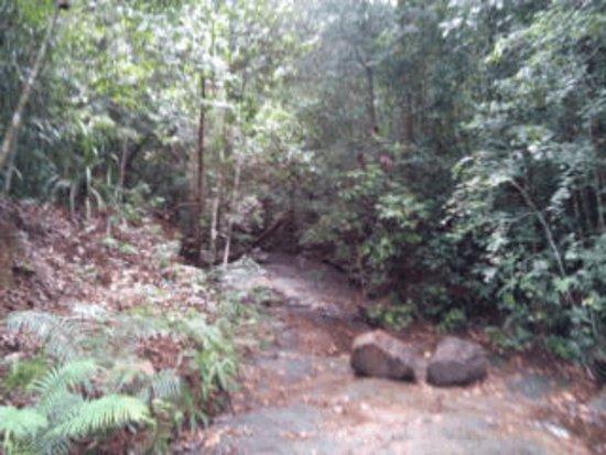 Southern Province, ศรีลังกา: roads