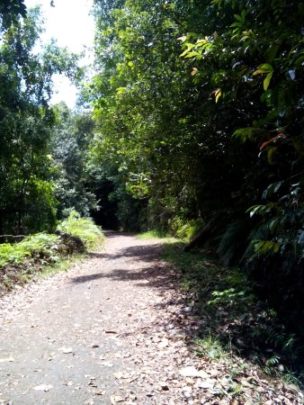 Provincia Sur, Sri Lanka: roads
