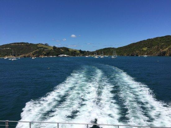 Waiheke Island, New Zealand: photo6.jpg