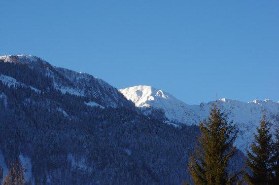 Dellach, Austria: Blick auf die Karnischen Alpen
